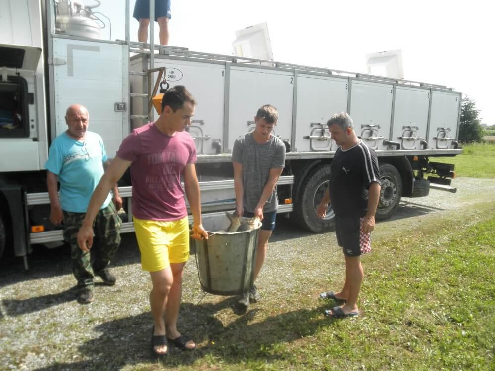 Poribljavanje umjetnih jezera ZŠRDUB 5. srpnja 2019. godine s 2.080 kg ribe šaran